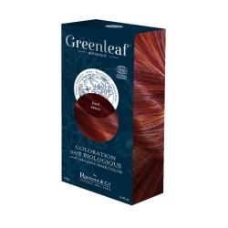 Coloration végétale - Red Wine